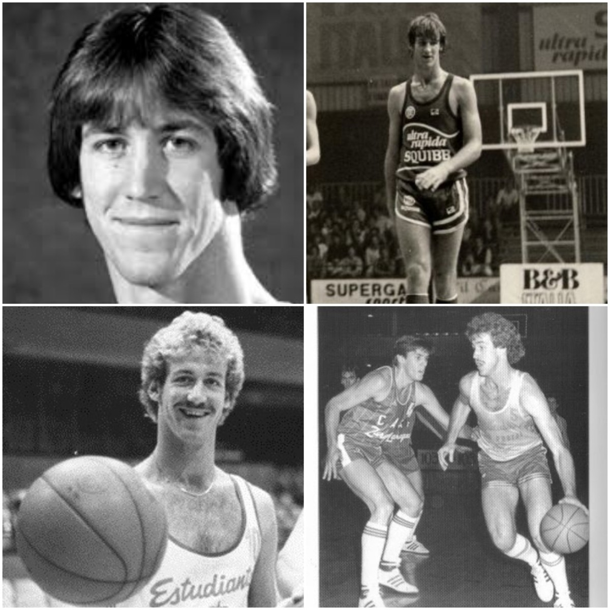 Terry Stotts (Portland Trail Blazers)